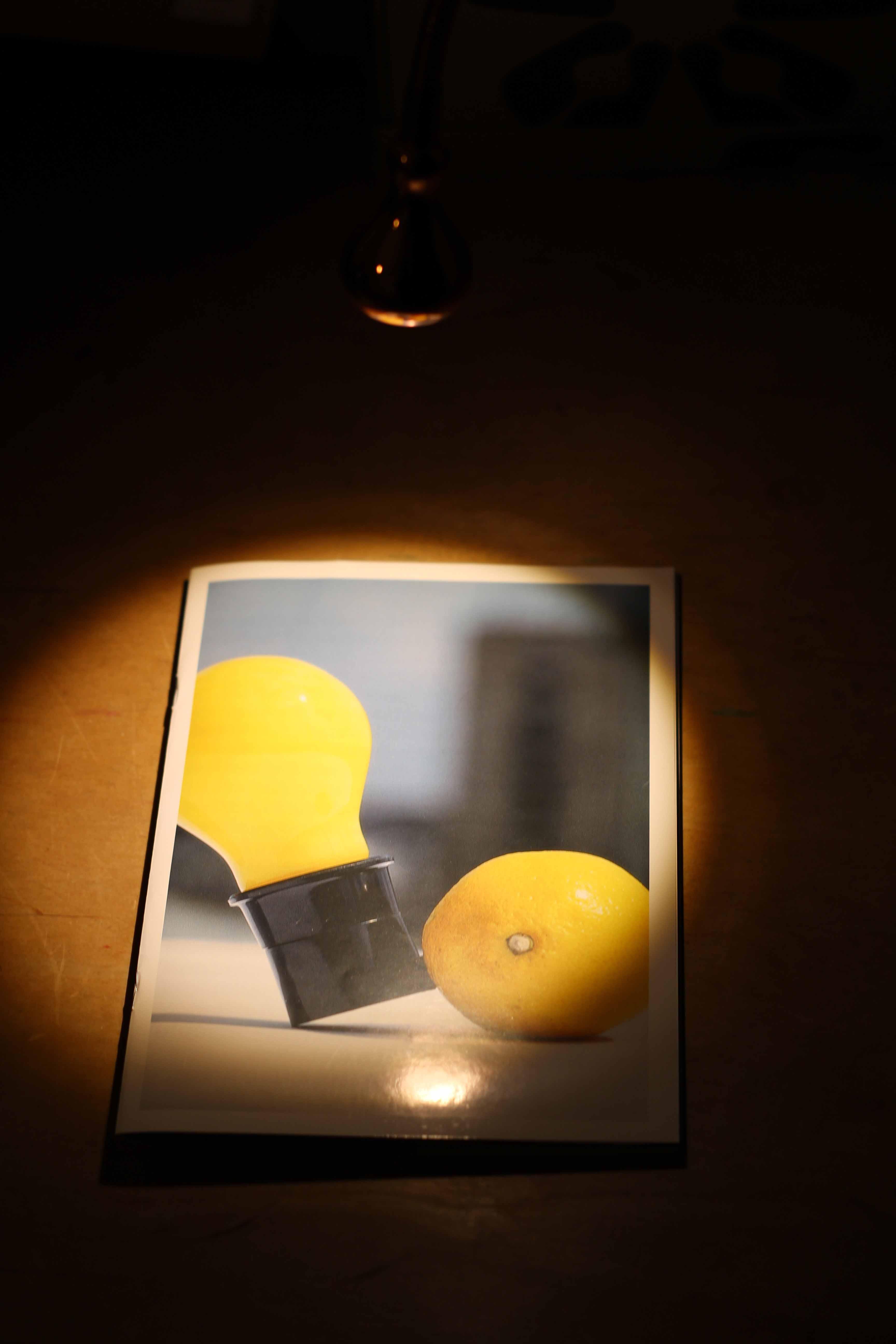Beuys' Werk näher beleuchtet …